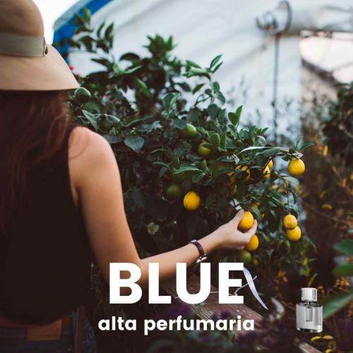 Perfume Blue