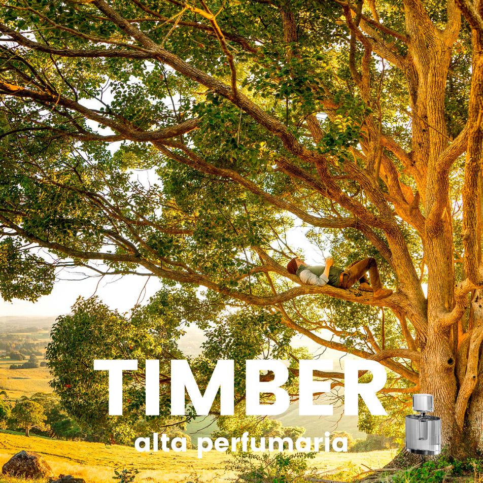 Perfume – Timber