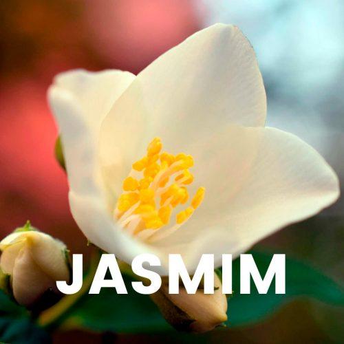 Aroma comercial - Jasmim