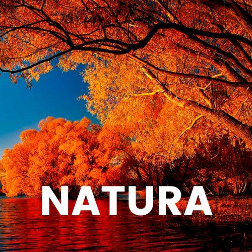Aroma comercial - Natura